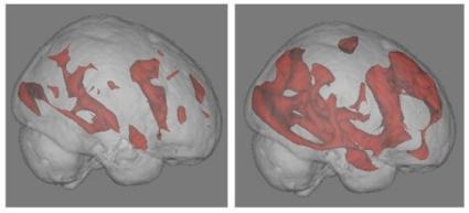 Cerveau Internet / Lecture