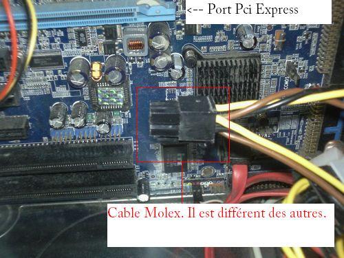 Câble Molex